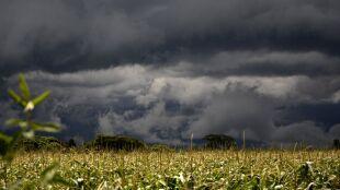 IMGW ostrzega przed burzami z gradem. Przybyło alertów
