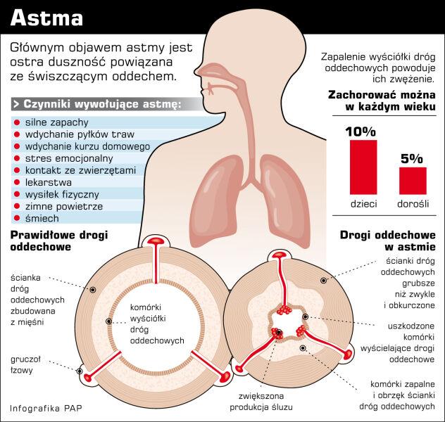 Astma - ważne informacje (PAP/Marta Sitkiewicz)